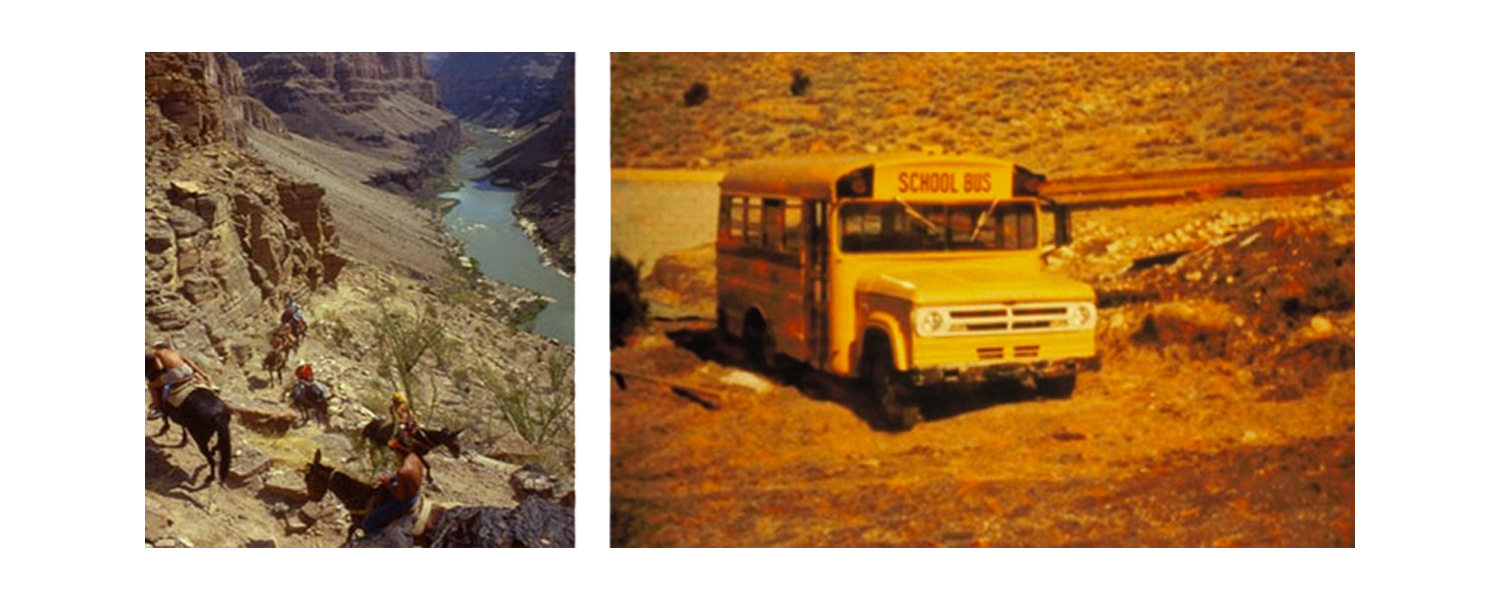 Grand Canyon Mule ride and old School Bus
